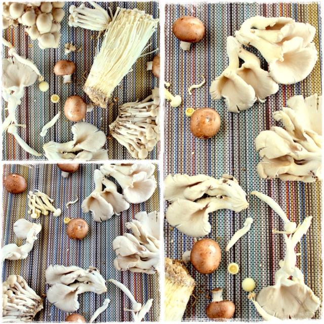 shrooms2