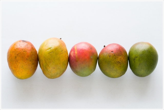 Mangos (1 of 56)-20140806