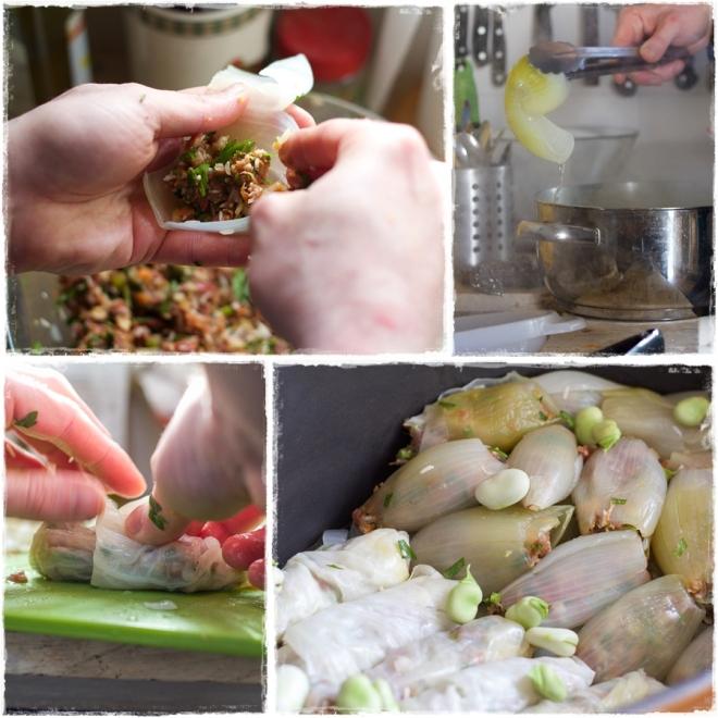 cabbage oniom