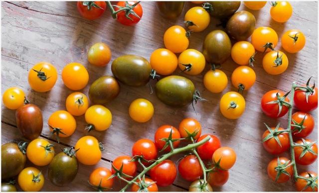 Eggplant Tomato Sauce (5 of 42)