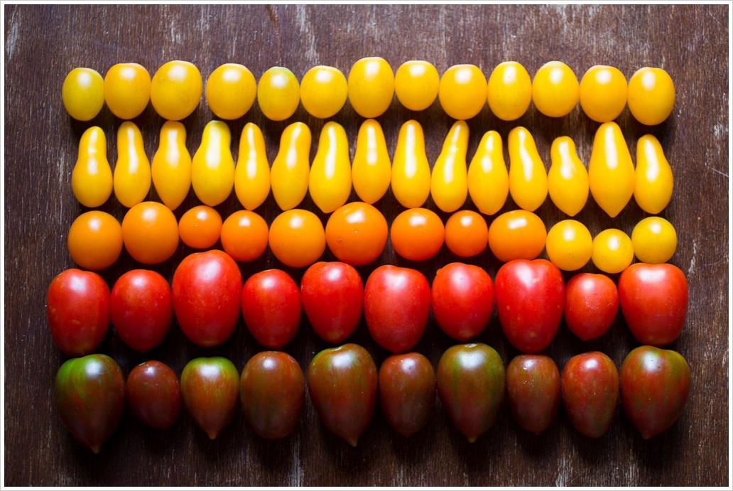 tomato-bread-pudding-9-of-43